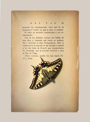 21_LIYL_libro
