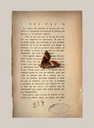 25_LIYL_libro